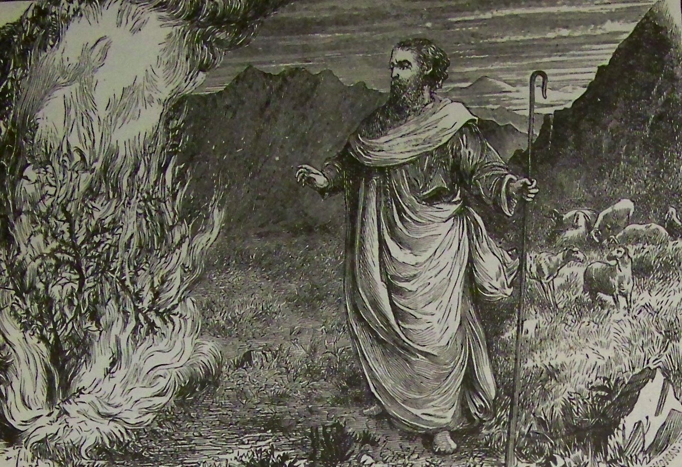 Holman moses and the burning bush