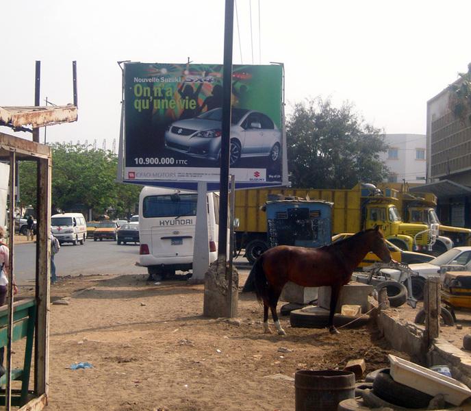 Standard dakar commercial1