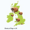 Thumb obesity of dogs in uk 660x440