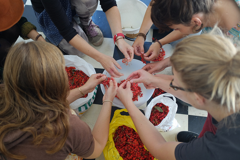 Pic opensorbus hands
